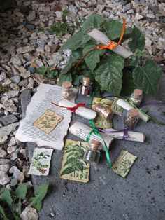 Miniature Herb Magic Vials  Set 1 by gypsiewitch on Etsy, $20.00