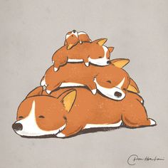 https://flic.kr/p/BXowpw | Comfy Bed - CORGI | Available at my Shop. By Chow Hon Lam/ Flying Mouse 365. © All right reserved. Website | Facebook | Tumblr | Twitter | Instagram | Shop