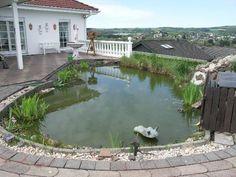 Birgel Vulkaneifel: EFH mit Einliegerwohnung 9 Zimmer Sauna Garten mit Biotop Garage Camper-Carport  Details zum #Immobilienangebot unter https://www.immobilienanzeigen24.com/deutschland/rheinland-pfalz/54587-birgel/Fertighaus-kaufen/22471:-2129930133:0:mr2.html  #Immobilien #Immobilienportal #Birgel #Haus #Fertighaus #Deutschland