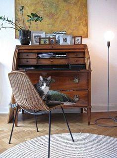 Wohnen mit Vintage-Möbeln: 8 kreative Beispiele aus der Community | SoLebIch.de