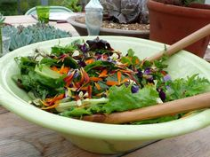 The English Garden: Edible Flowers for your Salad Gardenista. Want to plant with Francesca Bee Food, Prebiotic Foods, Outdoor Food, Food Trends, Edible Flowers, Healthy Lifestyle, Clean Eating, Lunch, Cooking
