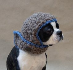 Umm . . . so, I generally gag at the sight of dogs in clothes. But I want this. The dog, the head warmer, and whatever impulse said 'let's put the two together!!' Sigh.