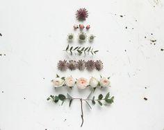 Christmas Tree | humphrey & grace