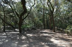 Fort Clinch, Amelia River Campground, site 36, Fernandina Beach, FL