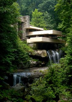 I loved Fallingwater - designed by Frank Lloyd Wright. There are stairs from the living room that go down into the stream! Beautiful waxed stone floors that look like river rock, wonderful wide spaces, windows. It is very like being outdoors and indoors simultaneously.