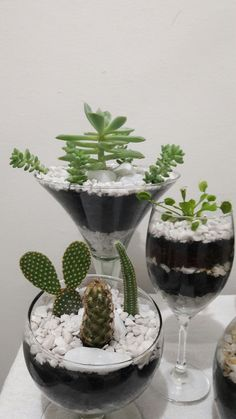 Top Inspiration Planting Succulents Indoors Succulents are easy plants to raise and look after. Before you commence planting succulents indoors, its necessary for you to pick the proper type of. Succulent Arrangements, Cacti And Succulents, Planting Succulents, Cactus Plants, Growing Succulents, Cactus Decor, Cactus Art, Terrarium Plants, Succulent Terrarium