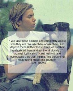River Phoenix quotes about veganism River Phoenix Quotes, Books And Tea, Famous Vegans, Vegan Quotes, Why Vegan, Stop Animal Cruelty, Vegan Animals, Think, Statements