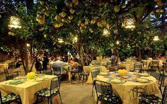 Restaurant da Paolino Lemon Trees, Capri by Capri Island; omg love....I need to start flying