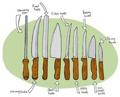 illustrated guide to kitchen knives