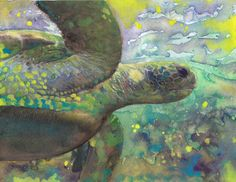 Fine Art Print Reproduction Giant Sea Turtle Watercolor Painting