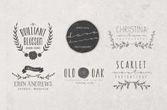 Hand Drawn Logos + Elements Vol. 2 by MakeMedia Company, via Behance