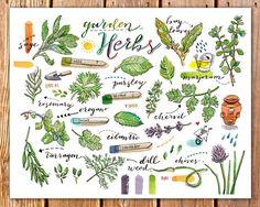 Herbs print. Garden. Food illustration. Kitchen decor. by LouPaper, $20.00