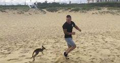BFF: Dieser Mann liebt sein Känguru-Baby! #News #Unterhaltung