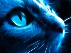 Night_Cat_by_l3viathan2142.png