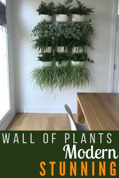 Love this wall of plants with this vertical garden.  The symmetry with the spacing and 3 plants of the same variety.    #greencleandesigns #wallofplants #verticalgarden Tiered Planter, Planter Boxes, Cubicle Partitions, Commercial Planters, Cubicle Walls, Stone Planters, Snake Plant, Plant Wall, Green Cleaning