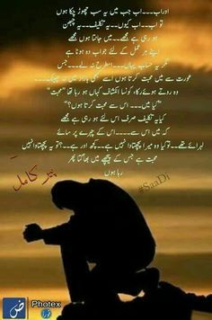 Peer e kamil Quotes From Novels, Urdu Thoughts, Best Novels, Urdu Novels, World Of Books, Secret Love, Urdu Poetry, My Life, Writer