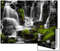 The Sound of Water Art on Acrylic by Philippe Sainte-Laudy at Art.com
