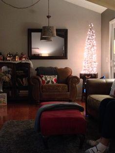 Tomatoe cage and Christmas lights=  Christmas tree