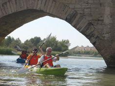 Bajo el puente de Tudela