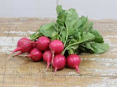 Pink Beauty Radish - A beautiful round pink radish that has become hard to find. It is sweet and tasty.