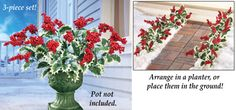 Festive Holly Berry Bushes - Set of 3