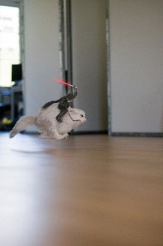 Star Wars Pets