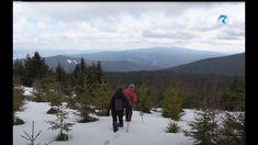 Mountains, Nature, Naturaleza, Nature Illustration, Off Grid, Bergen, Natural