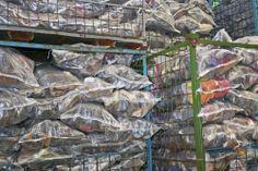 19 – Das sind die uns schon bekannten grünen Gitterboxen. Dort landen die fertig gepackten Säcke wie zu Anfang schon die geschlossenen SHUUZ Kartons bei ihrer Ankunft.