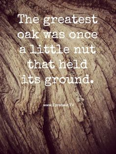 The greatest oak was once a little nut that held its ground - I love this quote! Great Quotes, Me Quotes, Roots Quotes, Attitude Quotes, Inspirational Message, Some Words, Life Inspiration, Monday Motivation, Beautiful Words