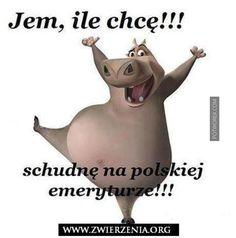 Wtf Funny, Funny Cute, Haha, Funny Animals, Cute Animals, Jw Humor, Weekend Humor, Funny Mems, Cringe