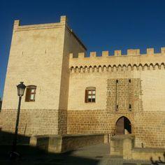 Castillo de Marcilla #Navarra