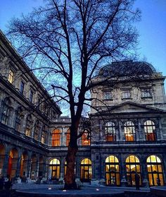 University of Vienna // their applied arts program is AMAZING. I hope we'll see some student work while we're there