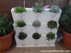 /mini-garden-com-ervas-aromaticas.html#