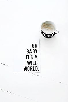 Baby, its a wild world.