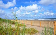 Explore the Hidden Treasures of Louisiana's Beaches   Louisiana Travel