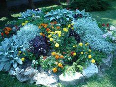 Backyard, Plants, Gardens, Patio, Backyards, Plant, Planets