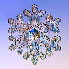 Snow crystal, illuminated with colored lights (5x). Microscopic picture by Dr. Kenneth Libbrecht