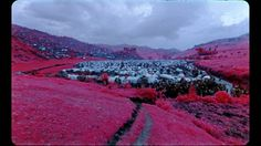 Richard Mosse: The Enclave Using an extinct type of infrared military film, Irish photojournalist and artist Richard Mosse documents the war-ravaged Democratic Republic of Congo...