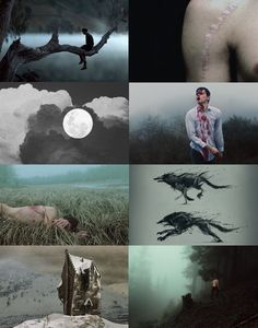 Harry Potter Aesthetics ➤ Werewolf Remus Lupin