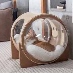 Adorable Cat House Pets Design Ideas is part of Cats - If you are a cat lover, then you are alway think to treat them with very well We all love to treat Crazy Cat Lady, Crazy Cats, Sleeping Kitten, Sleeping Dogs, Cat Room, Pet Furniture, Furniture Design, Cat Accessories, Animal House