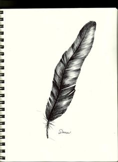Crow feather.....black ink drawing....Dana Kelley Carter