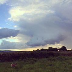Blue skies and black #landscape #photography #explorecornwall #walkswithethel