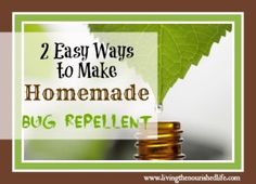 Homemade bug repellent. Going to try this for sure!