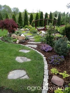 Forum ogrodnicze - Ogrodowisko Backyard Patio Designs, Yard Design, Backyard Landscaping, Evergreen Landscape, Evergreen Garden, Beautiful Flowers Garden, Beautiful Gardens, Landscape Architecture, Landscape Design