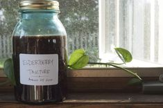 Elderberry tincture for colds