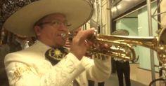 Mariachi band serenades Trump Tower on election night