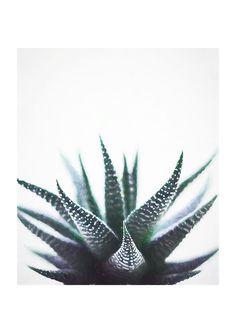 East End Prints Ltd - Green Topaz, £19.95 (http://www.eastendprints.co.uk/products/green-topaz.html)
