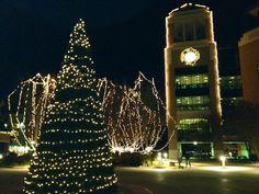 University of Louisiana at Monroe looks beautiful at Christmas time!