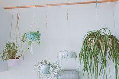 tringle en cuivre et plantes suspendues