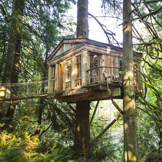 10 Amazing Treehouses You Can Actually Stay In | Outside Online